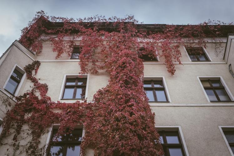 berlin-fall-2018-37