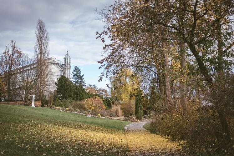 berlin-fall-2018-103