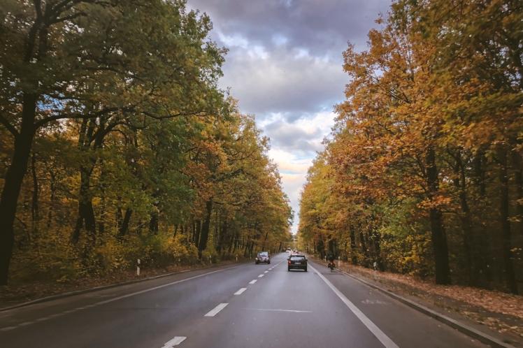 berlin-fall-2018-112