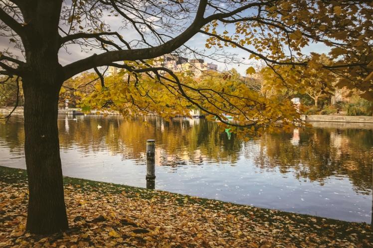 berlin-fall-2018-121