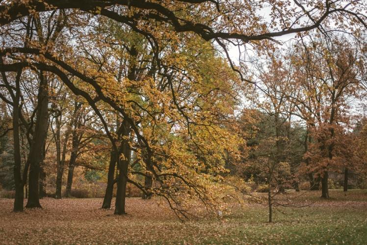 berlin-fall-2018-89